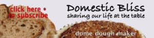 The Domestic Bliss Blog Title Image